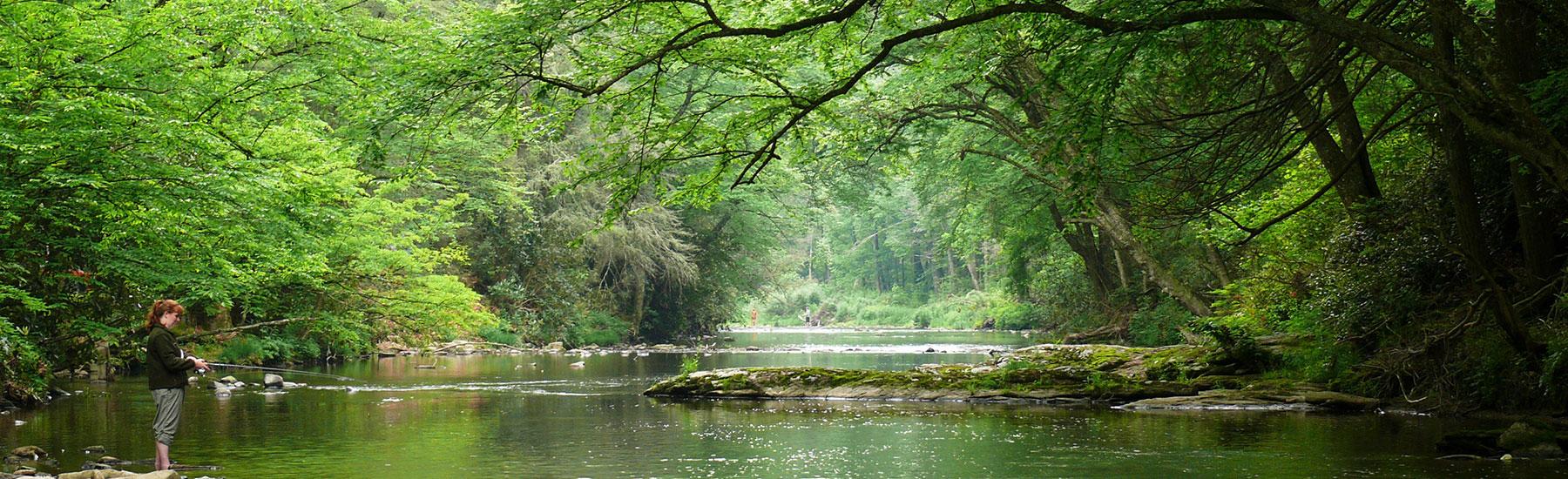 Linville_River-header-image
