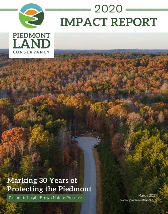 Impact Report Thumbnail